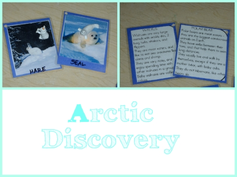 arctic discovery for blog