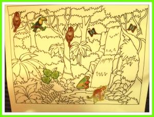 rainforest pic 1